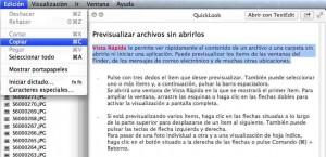 copiar_texto_en_vista_rapida